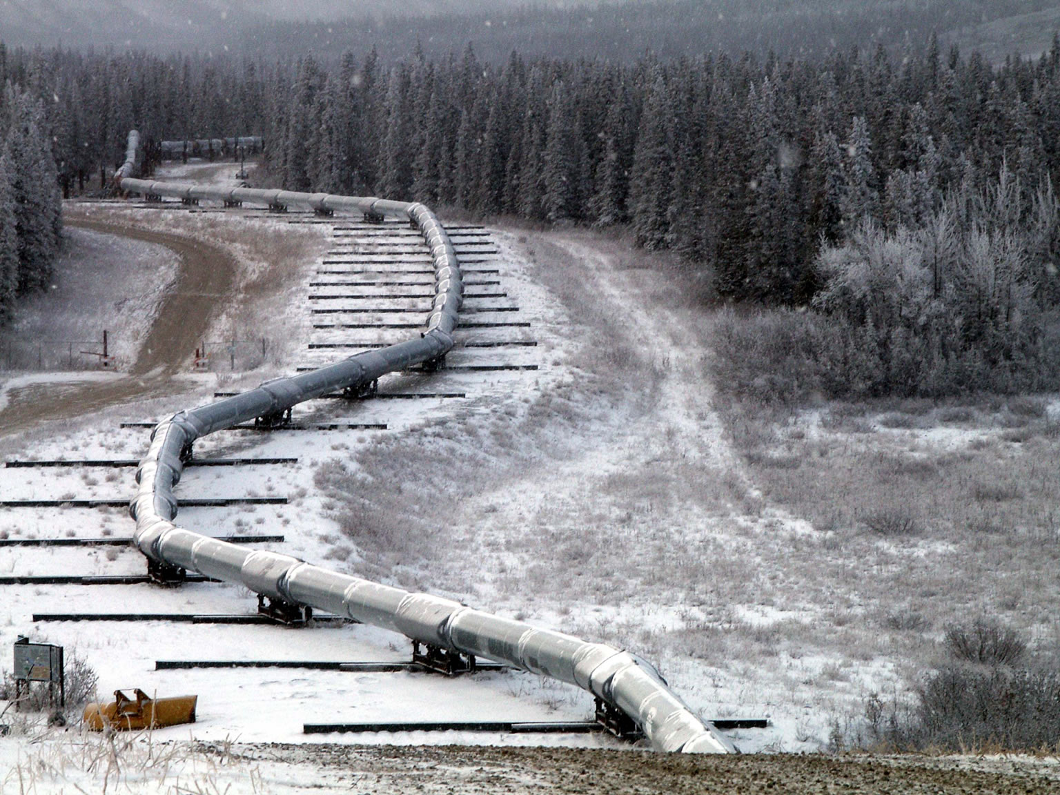 The Trans-Alaska oil pipeline is mounted on sliders where it crosses the Denali fault. During a large (magnitude 7.9) earthquake in 2002, this system allowed the pipeline to move without breaking.