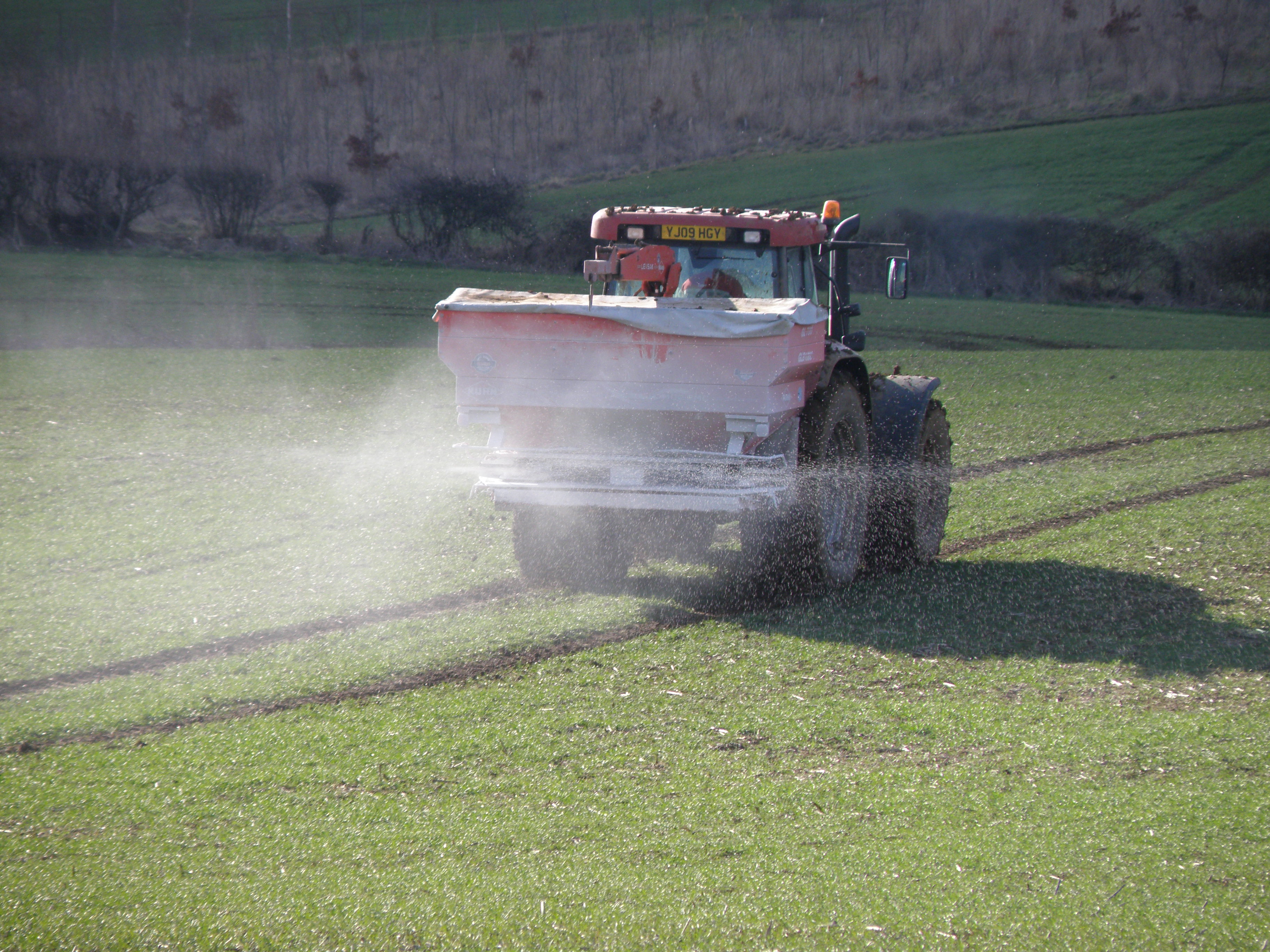 Ammonium nitrate fertilizer being applied to winter wheat. Almost all ammonia used for fertilizer is derived from natural gas.