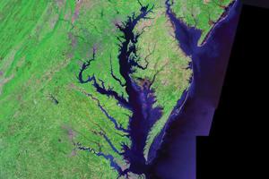 Image of the Chesapeake Bay taken from Landsat satellite data.