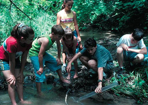 Six students collecting water samples by a stream. © Tim McCabe, NRCS