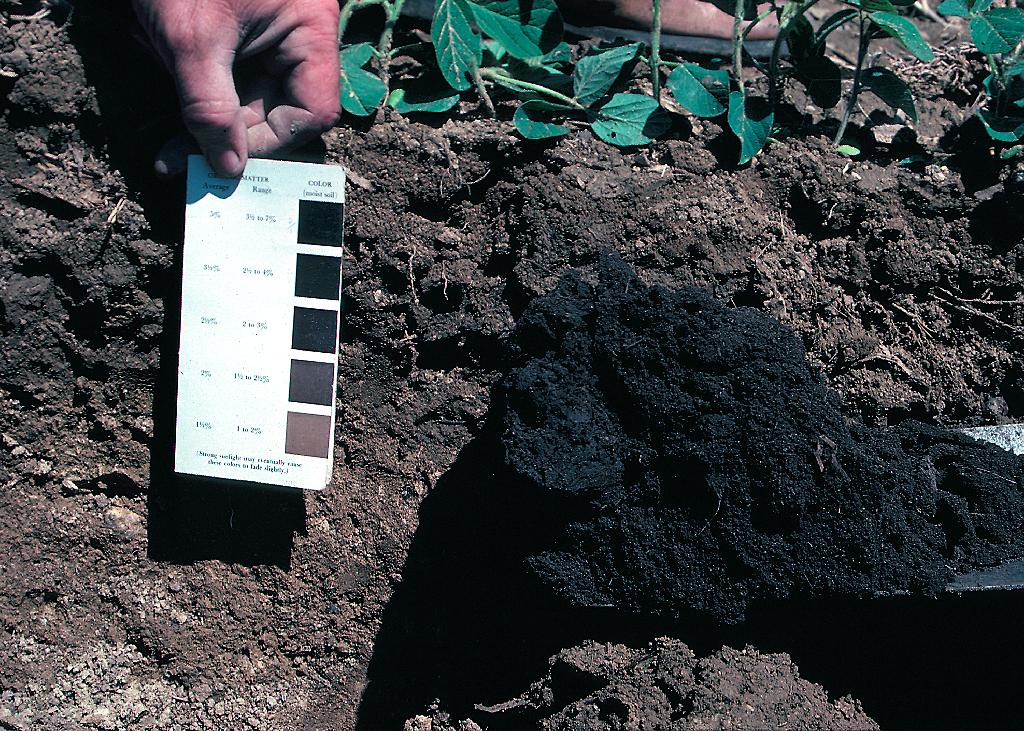 what materials make up soil american geosciences institute ForWhat 5 Materials Make Up Soil