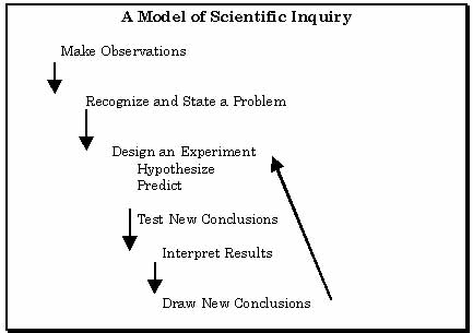 Scientific Inquiry Diagram
