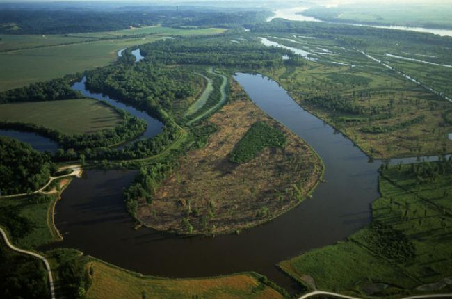 Floodplain. Image Copyright © Michael Collier, http://www.earthscienceworld.org/images