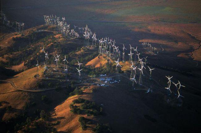 A wind energy farm in Tehachapi, California.
