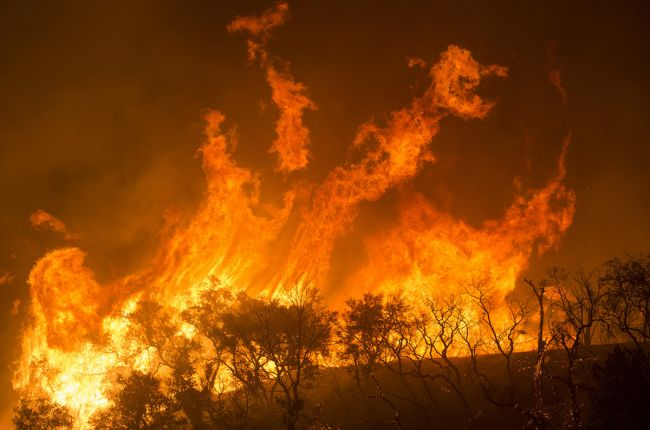 Flames from the Thomas Fire in Los Padres National Forest, California. Image Credit: U.S. Forest Service