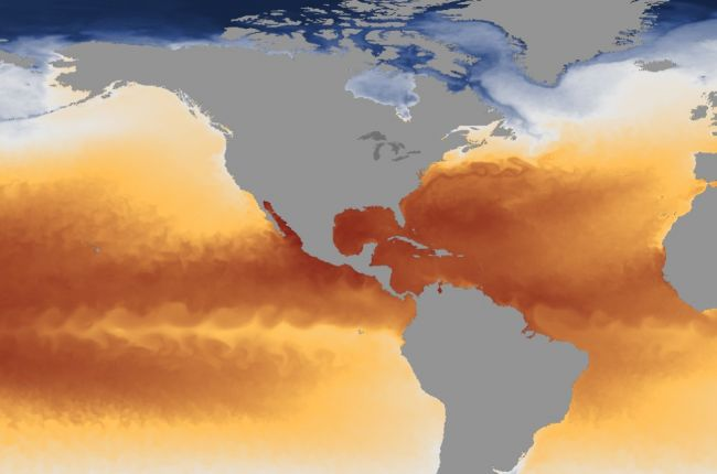 Screenshot of sea surface temperatures from the NOAA View interactive map