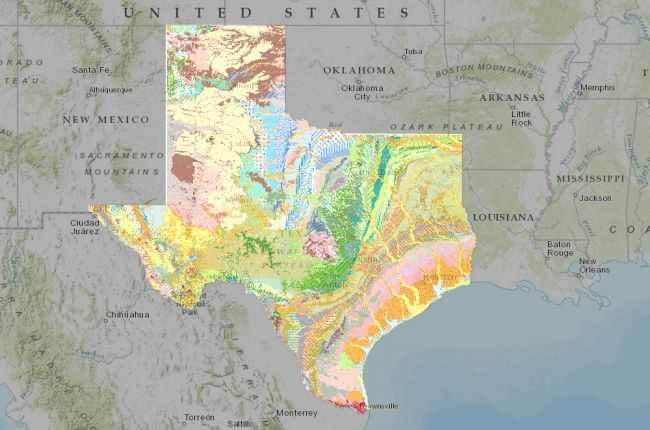 screenshot of the interactive map of texas surface geology