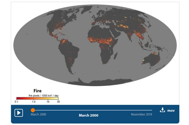 Screenshot of the NASA visualization of wildfires around the globe
