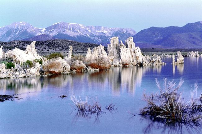 """When the level of this alkaline lake was tens of feet higher, fresh water bubbled up from below. Interaction between the fresh and alkaline water caused calcium carbonate to precipate and form upwardly growing """"tufa towers""""."""