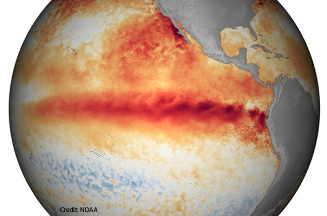 The National Oceanic and Atmospheric Administration's (NOAA) map of sea surface temperature anomalies shows warmer surface water temperatures in the eastern equatorial Pacific Ocean during El Niño. Image Credit: NOAA