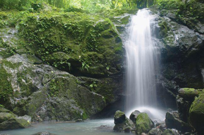 Large forest waterfall. Image Copyright © iStock.com/olof vandersteen