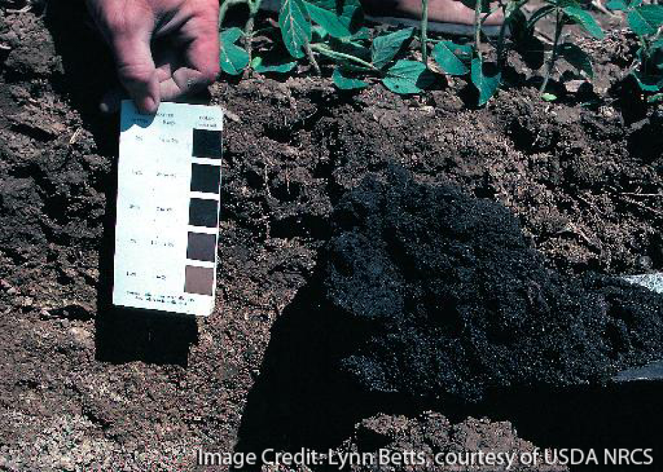 Unpacking soil compaction with sssa american for American soil