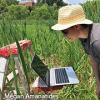 Geoscientist working in a wetland.
