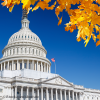 Image of the U.S. Capitol Dome with autumn leaves on trees.