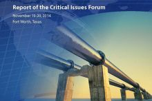 Cropped cover of the 2014 Critical Issues Forum