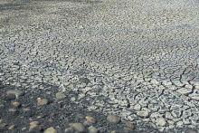 Cracked land at Lake Pakowki. Image Copyright © Michael Collier http://www.earthscienceworld.org/images