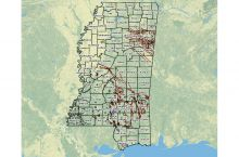 Screenshot of Mississippi oil and gas map