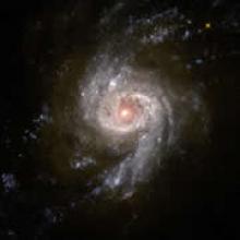 Galaxy NGC 3310