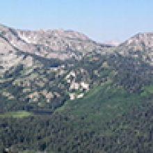 Geological Surveys Database