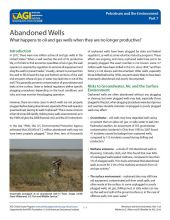 Cover of Abandoned Wells