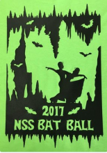 Promotional Poster for the NSS Bat Ball.