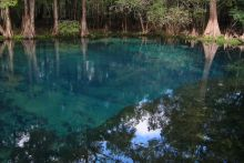 A groundwater spring in Florida. Image Credit: Stewart Tomlinson, U.S. Geological Survey