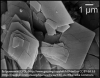 Scanning Electron Microscope Image of Hydromagnesite.