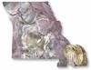 Explore Mozarkite - the Missouri State Rock! Image Credit: Missouri Department of Natural Resources.
