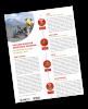 Image of the new VDAP Fact Sheet